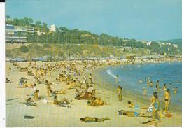 CPSM TOULON LE CAP BRUN LA PLAGE - Toulon