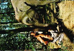 Carte 1960 JACQUES BOUILLAULT ET JULIE SON ELEPHANT D'ASIE - La Fleche