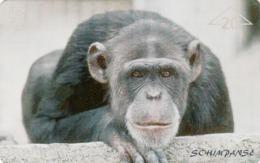 AUSTRIA - Monkey Ats, F139A , Tirage 660, 03/97 - Oesterreich