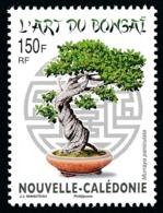 NOUV.-CALEDONIE 2014 - Yv. 1227 **   Faciale= 1,26 EUR - Flore. L'art Du Bonsaï. Buis De Chine  ..Réf.NCE25728 - Nouvelle-Calédonie