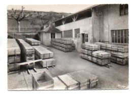 GF (71) 476, Burgy, Combier, Pépinières Letourneau, Mars 1962, Un Lot De Greffés Prêt à être Placé En Chambre De Stratif - France
