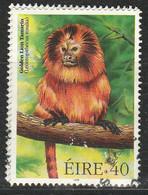 PIA - IRLANDA - 1998 : Fauna Irlandese In Via Di Estinzione -Piccola Scimmia-leone  - (Yv 1108) - Scimmie