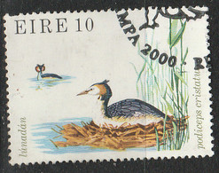 PIA - IRLANDA - 1979 : Uccello Podiceps Cristatus  - (Yv 401) - Usati