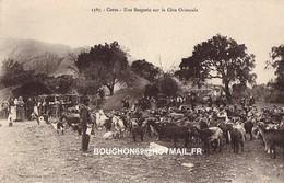 20 Type Corse Une Bergerie Sur La Cote Orientale Berger Moutons Chevre Goat RARE - Francia