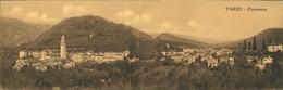 Cartoline Tarzo Panorama 2-teilige Klappkarte Panoramakarte 1915 - Zonder Classificatie