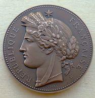 DB-040Médaille Bronze Gravée Sur Tranche Signée Ondine Anagramme H.D. Offert Par Le Conseil Général Des Bouches Du Rhône - Bronzen