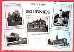 Souvenir De GOUGNIES - België