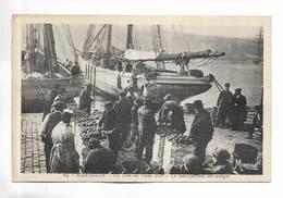 13 - MARSEILLE - Un Coin Du Vieux Port - Le Débarquement Des Oranges - Vieux Port, Saint Victor, Le Panier