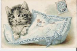 CHATON . CPA Gaufrée Voyagée En 1905 Petit Chat Sur Son Coussin - Gatos