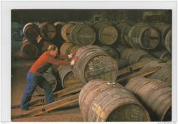 COGNAC MARTELL LOT DE 3 CP NEUVES CHAIS DE MARIAGE CHEVALTAGE DES BARRIQUES TONNELLERIE - Cognac