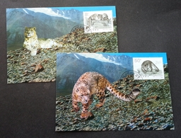 China Snow Leopard 1990 Big Cat Fauna Wildlife (maxicard) - 1949 - ... République Populaire