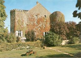 CHATEL GERARD Le Chateau - Francia