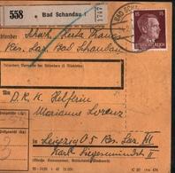 ! 1943 Paketkarte Bad Schandau Nach Leipzig, Hindenburg Zusammendrucke - Covers & Documents