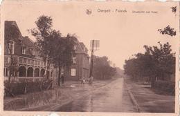 Overpelt-Fabriek: Straatzicht Met Hotel.(1945) - Overpelt