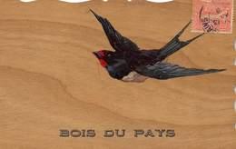 CPA OISEAU  CARTE EN BOIS - Fancy Cards