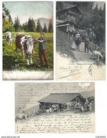 SUISSE - Lot De 5 CPA - Alp, Val D'Illiez, Chalet, Ferme Robert, Creux Du Van -1902 à 1909 - VS Valais