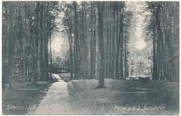 TREBNITZ, TRZEBNICA - Partie V. D. 3 Aussichten - Poland