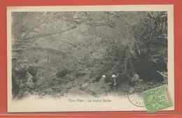 REUNION CARTE POSTALE AFFRANCHIE DE 1905 DE SAINT DENIS POUR PARIS FRANCE - Réunion (1852-1975)
