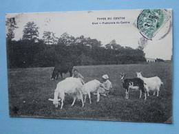 BOURGES -- CHATEAUROUX -- Pastorale Du Centre - Chevrières Et Troupeau De Chèvres - Breeding