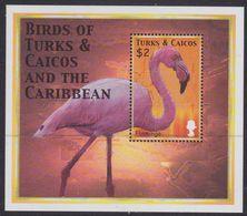 Turks & Caicos Islands 1498 - Caribbean Birds 2000 M/S - MNH - Fenicotteri
