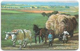 Germany - Schwabinger Münzstube, Horses #2 - Serie K (BUSINESS CARD) - 11.91, 20Units, 200ex, Mint - Altri