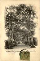 DAHOMEY - Carte Postale - Porto Novo - Avenue Gabrielle - L 53303 - Dahomey