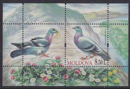 Moldova 708 - Birds 2010 M/S - MNH - Tauben & Flughühner