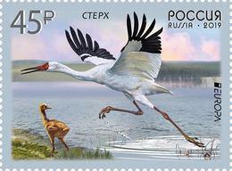 EUROPA CEPT - 2019 - Rusland, Russia - (National Birds) ** MNH - 2019