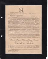 SENEFFE MARSEILLE Hôpital Militaire TONKIN Hervé Vicomte De PELLAN 1873-1905 Artillerie Coloniale Guérande BRETAGNE - Décès