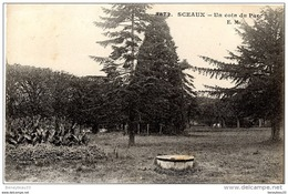 CPA (Réf :AS401) 3872. SCEAUX (HAUTS-de-SEINE 92) Un Coin Du Parc E. M - Sceaux