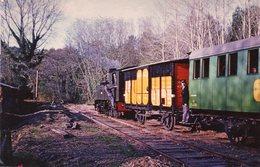 Tirage Kodak Sevran. Photo 14 X 9 Cms. Train, Locomotive Et Ses Wagons Dans Un Bois. Scan Du Verso. - Trains