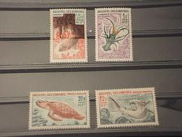 COMORES - 1966 FAUNA MARINA 4 VALORI - NUOVI(++) - Isole Comore (1975-...)