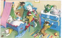 Chats Humanisé-dressed Cats -katzen -geklede Poezen -Mainzer - Gatto- - Chats