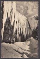 101769/ LE MONT-DORE, La Grande Cascade Sous Le Gel - Le Mont Dore