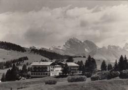 ALPE DI SIUSI-BOLZANO-BOZEN-ALBERGO=STEGER-DELLAI BERGGASTHOF=-CARTOLINA  VIAGGIATA NEL 1957 - Bolzano (Bozen)