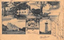 GRUSS Vom TANNBERG AUSTRIA~ZWISCHENSBRUGGER RESTAURANT-FORSTHAUS-TANNBERGWARTEP HOFBAUER POSTCARD 43613 - Österreich