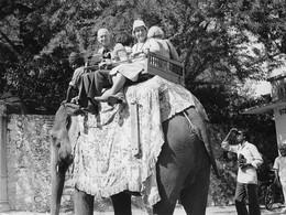 Photo Inde Promenade à Dos D'éléphant Photo Vivant Univers - Lugares