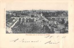 LUXEMBOURG  1897  PANORAMA Pris De La ROUTE De TREVES  (Bernhoeft) - Luxembourg - Ville