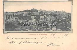 LUXEMBOURG  1897  VUE Prise Du BISSERWEG  (Bernhoeft) - Luxembourg - Ville