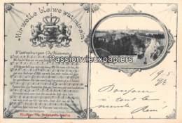 LUXEMBOURG  1897 MIR WELLE BLEIWE WAT MIR SIN  (Bernhoeft) - Luxembourg - Ville