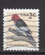 USA, Boiseau, Bird, Woodpecker, Pic - Specht- & Bartvögel
