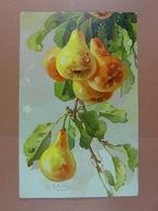 C.Klein Fruits /7/ - Klein, Catharina