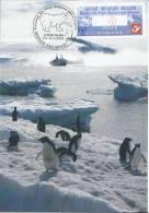BELGIQUE / BELGIUM (2009) - Carte Maximum Card ATM - Polar Regions & Glaciers - Menen - Penguin, Manchots, Ours, Bear - Tarjetas – Máxima