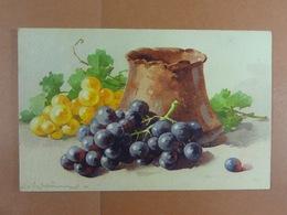 C.Klein Fruits /15/ - Klein, Catharina