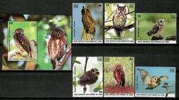 Cuba 2019 / Birds Owls MNH Vögel Aves Búhos Oiseaux Uccelli / Cu15923  C4-9 - Unclassified