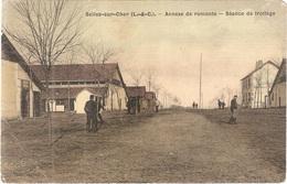 Dépt 41 - SELLES-SUR-CHER - Annexe De Remonte - Séance De Trottage - (couleur Toilée, Édit. Rabier) - Camp Hippique - Selles Sur Cher