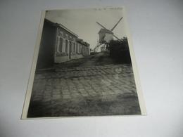 O.l.vrouw Waver Molen Foto - Sint-Katelijne-Waver