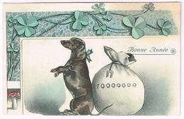 DACKEL - DACHSHUND 1907 Mit Pilz - Illustrateurs & Photographes