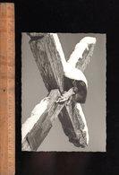 COMBLOUX Haute Savoie 74 : Une Croix De Chemin Avec Jésus Christ / Edition Photo Véritable René Bourdeau - Combloux