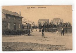 8632  Heide - Statiebareel  F Hoelen,phot, Cappellen - Kalmthout